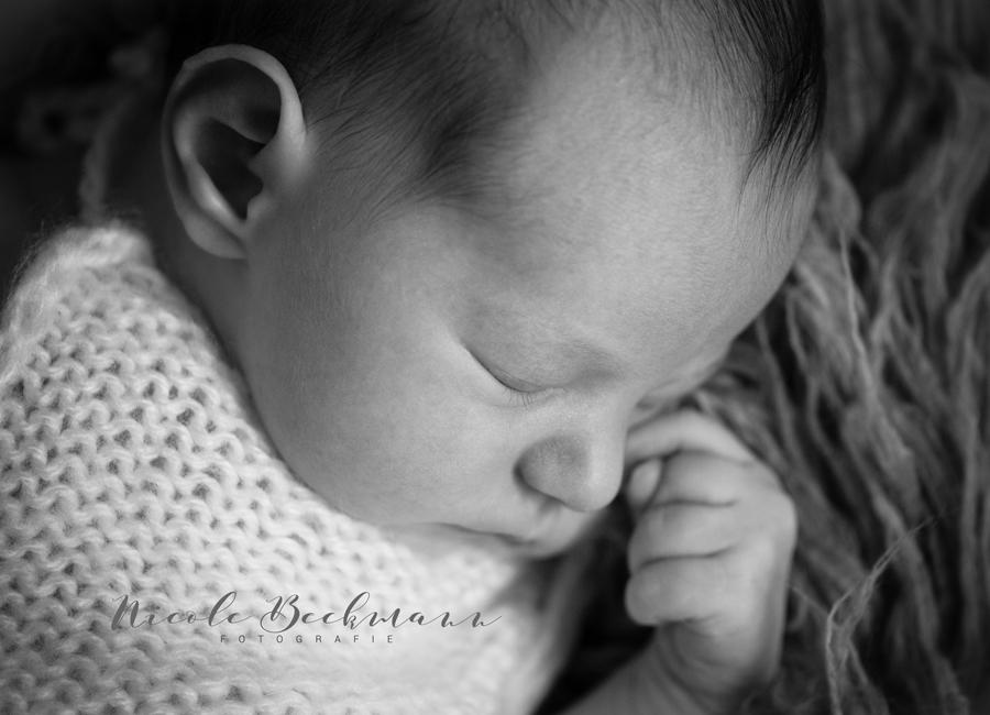 nicole-beckmann-fotografie-neugeborenenfotos-hannover-3