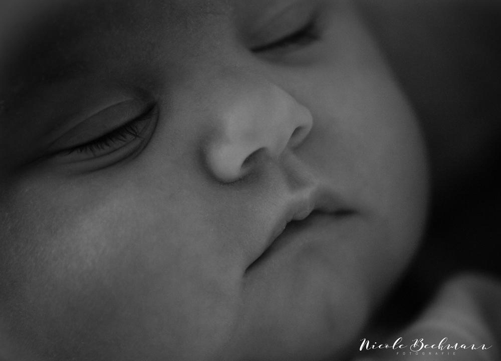 Nicole-Beckmann-Fotografie-Hannover-Neugeborenenfotografie-11